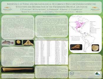 On the Importance of Fossil and Archaeological Occurrence Data for Understanding the Evolution and Distribution of the Freshwater Drum in North America.