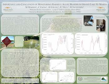 Importance and Challenges of Monitoring Harmful Algal Blooms